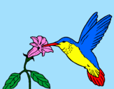 Coloring page Hummingbird and flower painted bylalachika