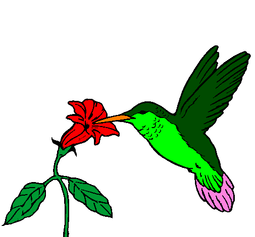Coloring page Hummingbird and flower painted bydiego