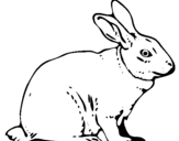 Coloring page Hare painted byAUSTIN