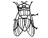 Coloring page Black fly painted byBlack Fly