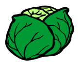 Coloring page cabbage painted bykk