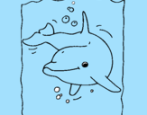 Coloring page Dolphin painted bykau~]a