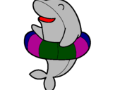 Coloring page Dolphin painted byaryan