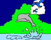 Coloring page Dolphin and seagull painted byLucca     eu    bruce