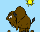 Coloring page Bison in desert painted bypedro