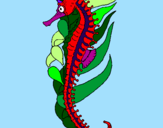 Coloring page Oriental sea horse painted byXavier