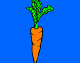 Coloring page carrot painted byMATTEO