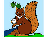 Coloring page Squirrel painted bykevinsuch