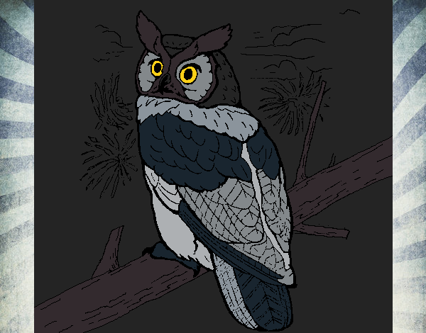 Colored page Great horned owl painted by User not registered