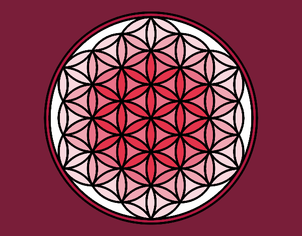 Mandala lifebloom