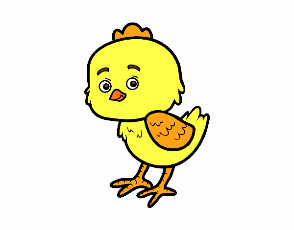 The Little Chick Cheep