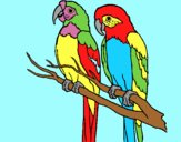 Coloring page Parrots painted byAnia
