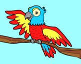 Coloring page Parrot in freedom painted byAnia