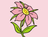 Coloring page Wild flower painted byLornaAnia