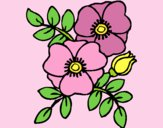 Coloring page Poppies painted byLornaAnia