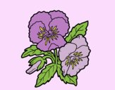 Coloring page Thought flower painted byLornaAnia