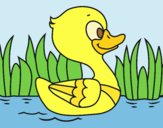 Coloring page River duck painted byLornaAnia