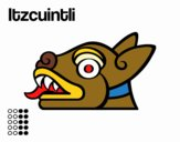 The Aztecs days: the Dog Itzcuintli