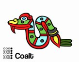 The Aztecs days: the Snake Coatl