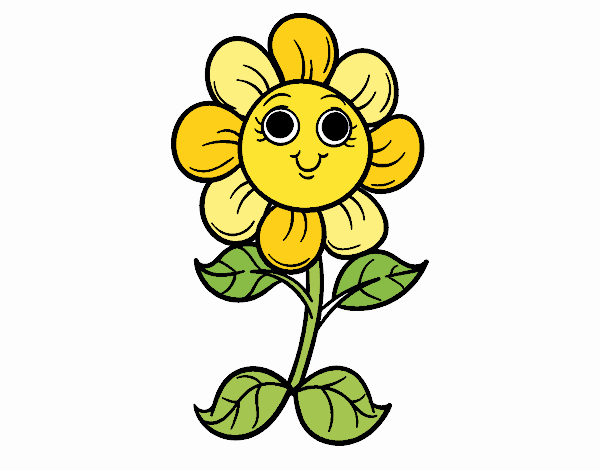 A little flower