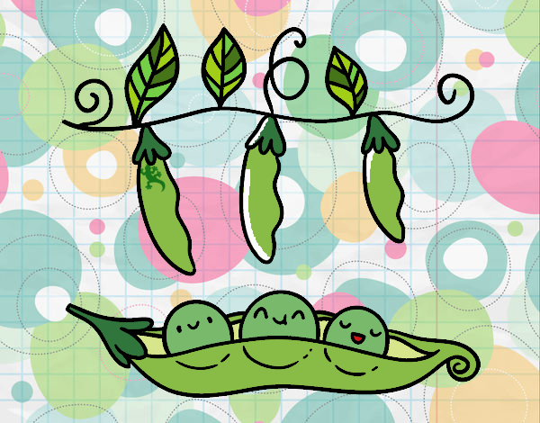 Peas in a pod near some pods !!!