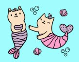 Mermaid cats